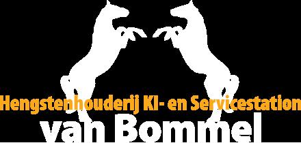 Hengstenhouderij van Bommel